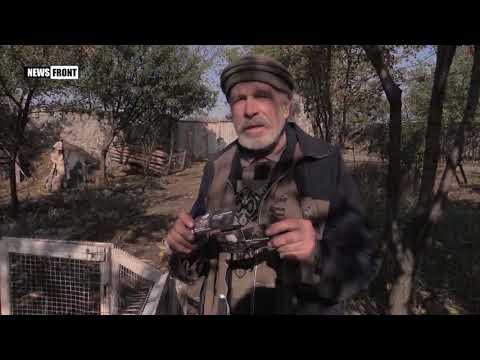 «Мы придём». ВСУ оповестили о «скором вводе» американских войск в Донбасс