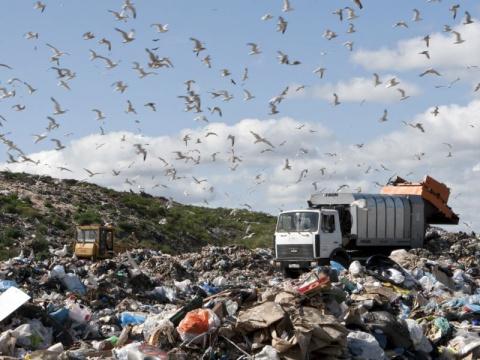 В Крыму выгрузили мусор у до…