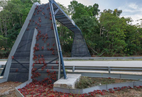 10 удивительных «мостов», сп…