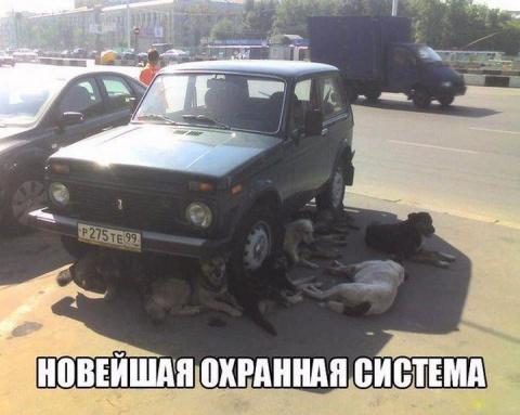 Умом Россию не понять, ее лишь юмором измерить