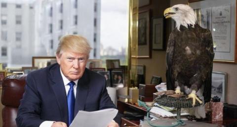 Как Трамп изменил взгляд аме…