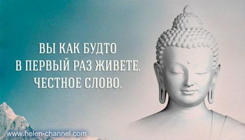 Проходил как-то Будда со сво…