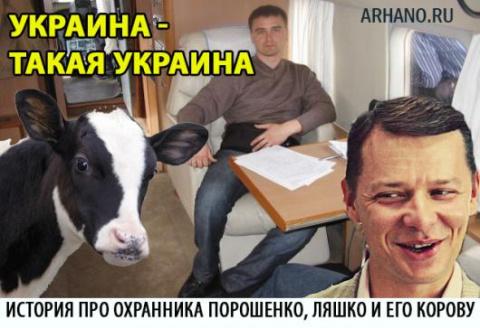 Новости Украины: История про…