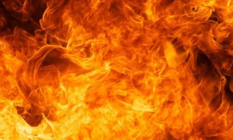 Причину пожара в окрестностя…