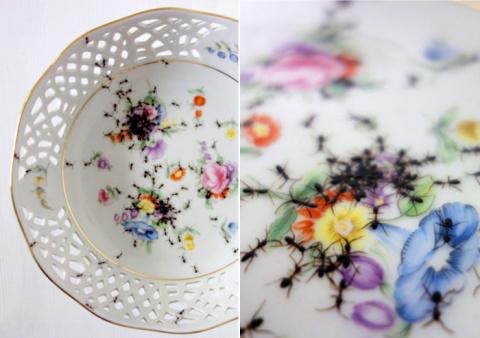 Неужели может понравиться посуда с нарисованными муравьями?