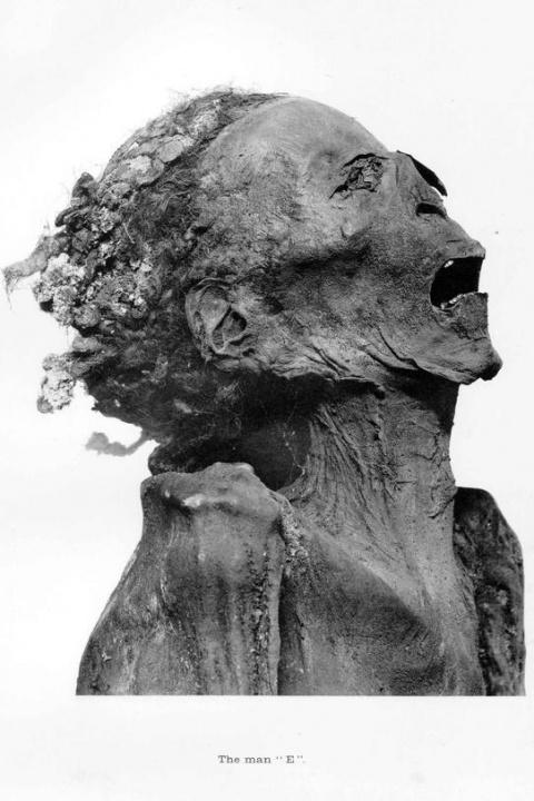 Царевич-отцеубийца - погребенный заживо?