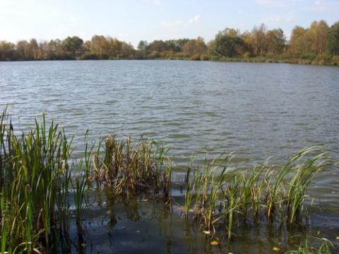Медвежьи озера . Аномальная зона России