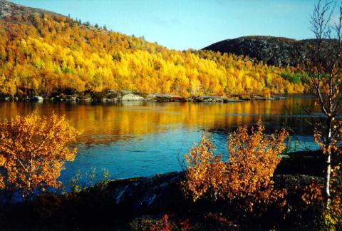 Осень на Имандре