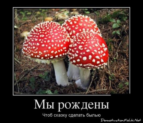 )))+ демативаторы...