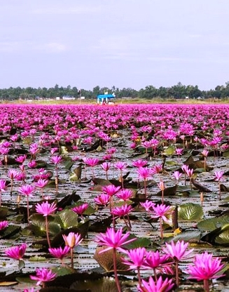 Озеро невероятной красоты --…