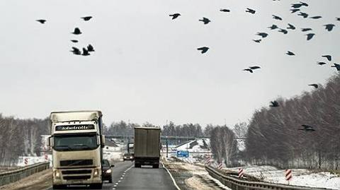 Медведев выделил собранные «Платоном» 10 миллиардов на улучшение дорог