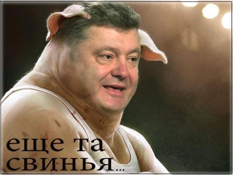 Порошенко запретил Путину называть Януковича легитимным