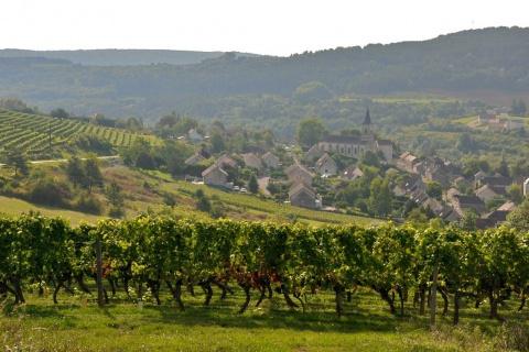Лион - праздник молодого вина