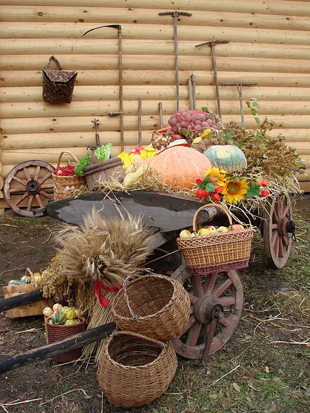 Как правильно хранить урожай. Советы садоводам