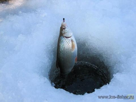 Особенности рыбалки в марте