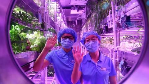 В Китае добровольцы проведут 200 дней в изолированной системе, симулирующей лунную базу