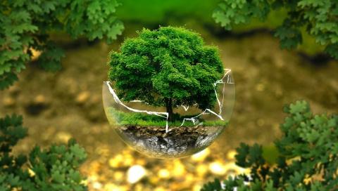 Составлен экологический рейт…