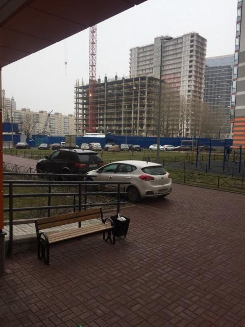 В культурной столице некультурно объяснили, где надо парковаться