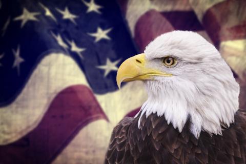 Наглость и самонадеянность губят даже лучших дипломатов США