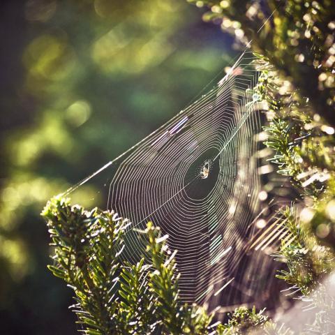 Прекрасные фотографии природ…
