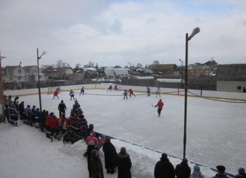 Хоккейная площадка собственными силами