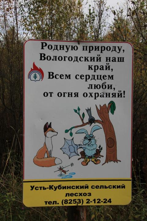 плакат лесхоза