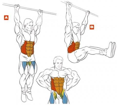 Шесть лучших упражнений для шести кубиков пресса