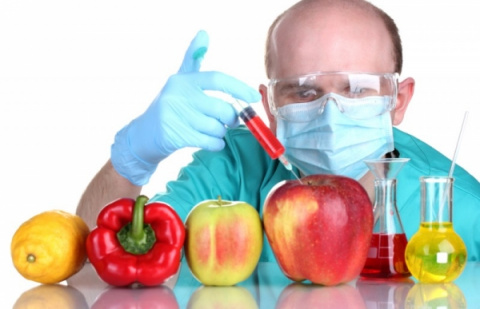 Так что такое ГМО? Завершено…