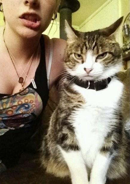 Вот, что получается, когда твой кот не любит фотографироваться. Просто рыдал от смеха!