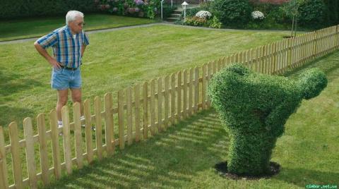 Хороший ли вы сосед? Тест