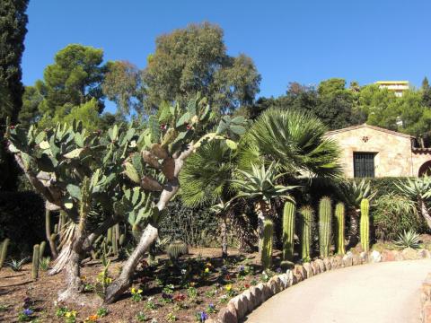 """""""Pinya de Rosa"""" - кактусовый парк на Коста Брава. Каталония."""