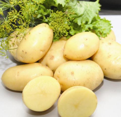 Все лето с молодым картофелем