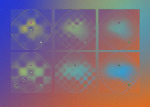 Глаза морских гребешков помогут улучшить зеркала телескопов