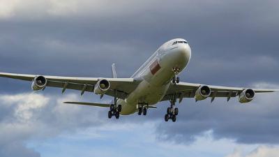 Египетские судмедэксперты заявили о высокой вероятности взрыва на борту A320