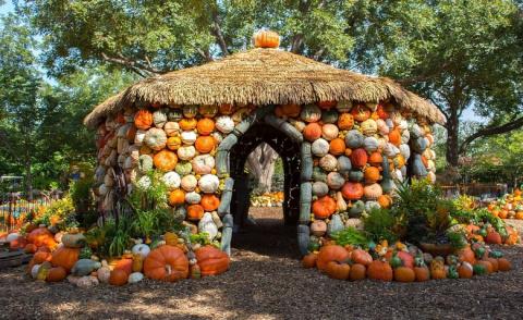 Осенняя деревня из тыкв
