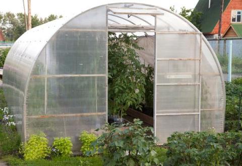 Как защитить растения в тепл…