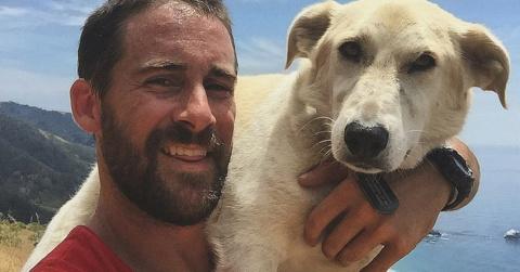Солдат спас бродячую собаку …