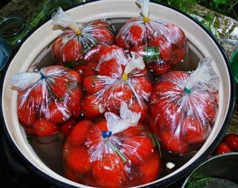 Помидоры в пакетах — один из самых простых способов соления помидор в домашних условиях