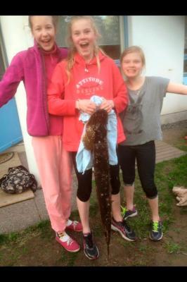 Три девочки поймали в Финлян…
