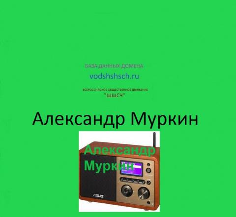 Александр Муркин