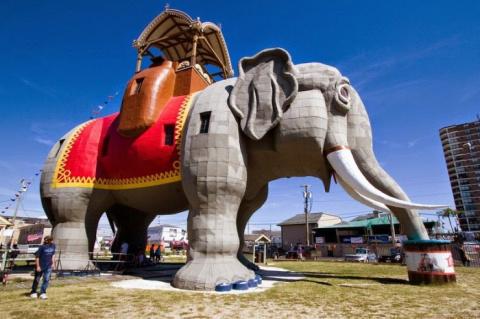 Шестиэтажная слониха Люси