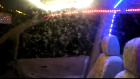 Десятки тысяч комаров захватили автомобиль рыбака
