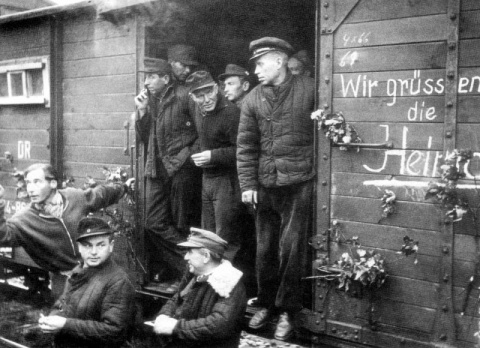 Если завтра война, или паровоз на Украину. Юлия Витязева