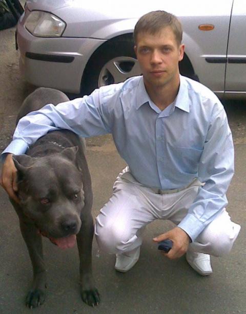 Дмитрий Булыгин