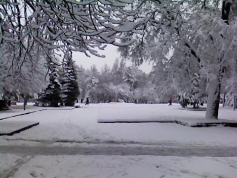 Наша зима