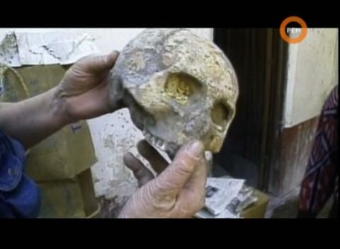 Останки людей и орудий найденые на глубине, где их быть не должно... Возраст находки 250 000 лет.