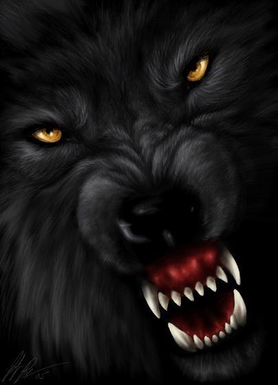 скачать картинки оскал волка