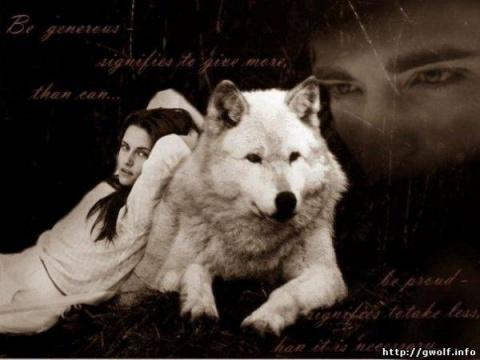 Волк и девушка картинки.