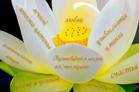 http://mtdata.ru/u32/photo9191/20393459905-0/big.jpeg