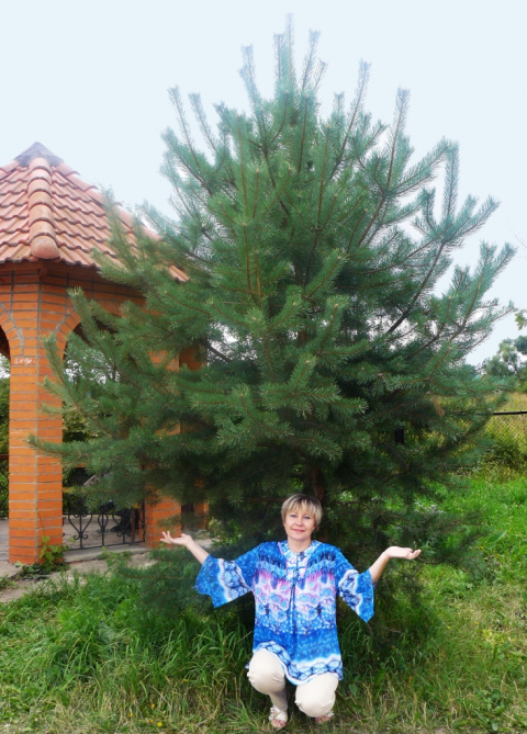 Елена Нарбаева